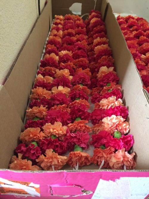 Carnation Flower Strings