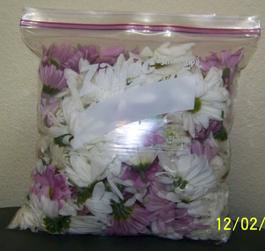 Mixed_Flower111